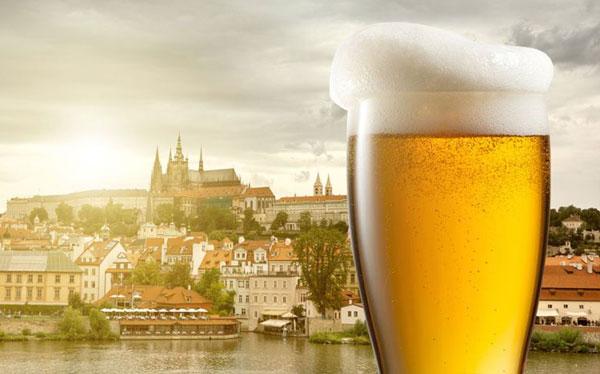 Afternoon beers prague stag premium